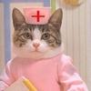 Умеют ли кошки лечить?